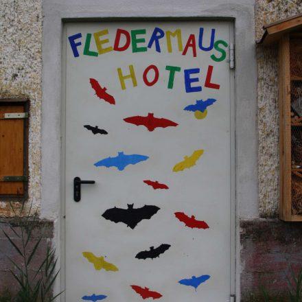 Fledermaushotel © Wildland-Stiftung Bayern