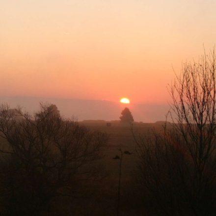Sonnenaufgang am Zählmorgen © Wildland-Stiftung Bayern
