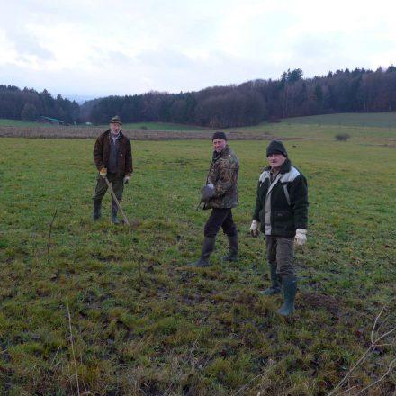 Heckenpflanzung fürs Rebhuhn in Tännesberg