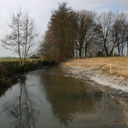 Grabenaufweitung©Wildland-Stiftung Bayern