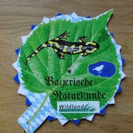 Bayerische Naturkunde©Wildland-Stiftung Bayern