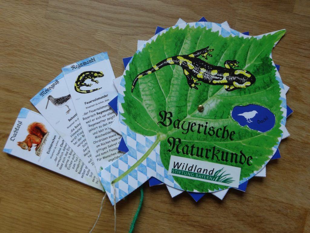 Bayerische Naturkunde © Wildland-Stiftung Bayern