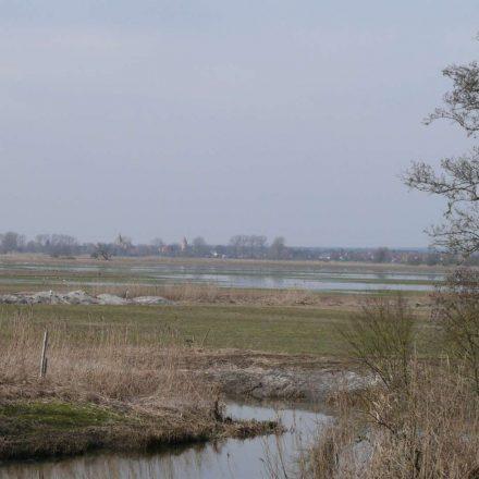 Wiesenbrütergebiet im Wiesmet ©Wildland-Stiftung Bayern
