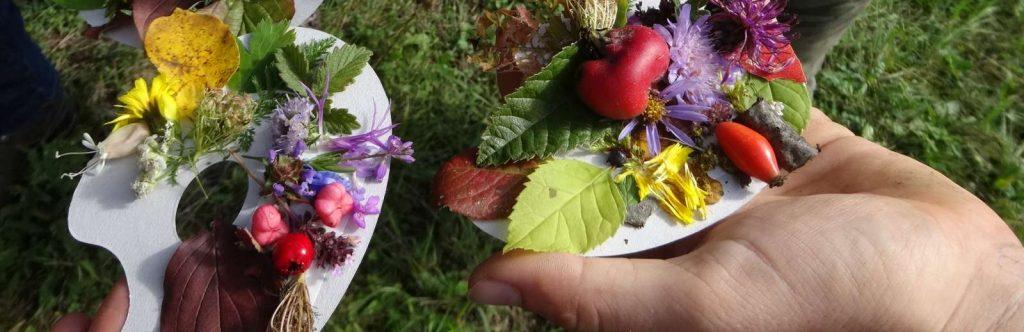 Farbpaletten bei Naturführungen©Wildland-Stiftung Bayern