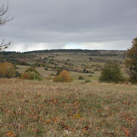 Herbststimmung im Naturschutzgebiet Lange Rhön©T. Kirchner