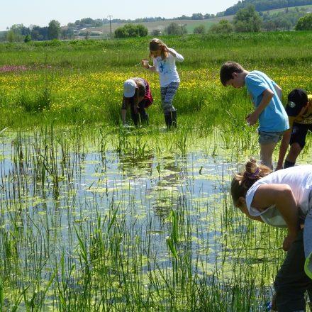 Umweltbildung mit Treffpunkt Wildland©Wildland-Stiftung Bayern